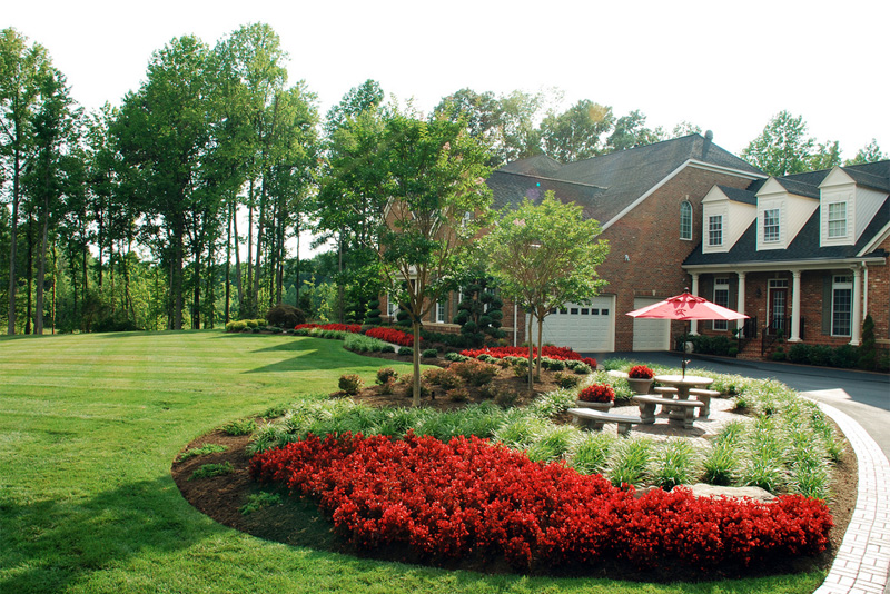 Caring for your lawn organically