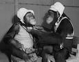 two chimpanzees in bonnets