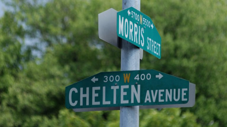 Uettwiller was hanging out at her Morris Street home when a young raccoon popped open her back screen door and began trying to claw through the back door. (Bas Slabbers/for NewsWorks)