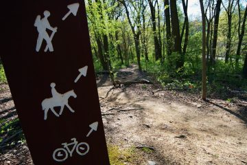 A sign pointing to the Wissahickon trails. (Bas Slabbers/for NewsWorks, file)