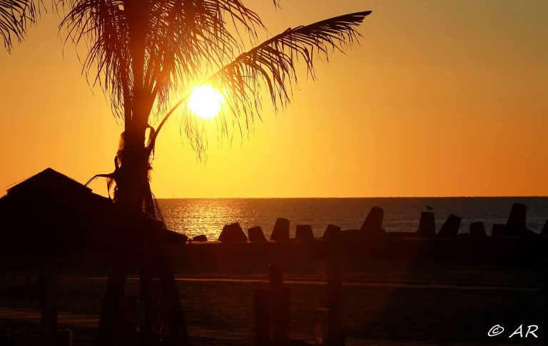 The August 21, 2013 sunrise in Point Pleasant Beach. (Photo: Asta Riporti)