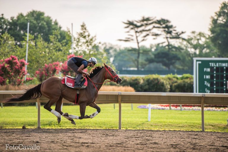 A practice run at Monmouth Park on Thursday by FotoCavallo.
