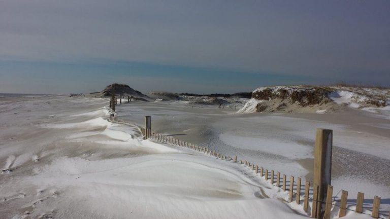 Island Beach State Park on Sunday. (Photo: Bonnie Delaney via Jersey Shore Hurricane News)
