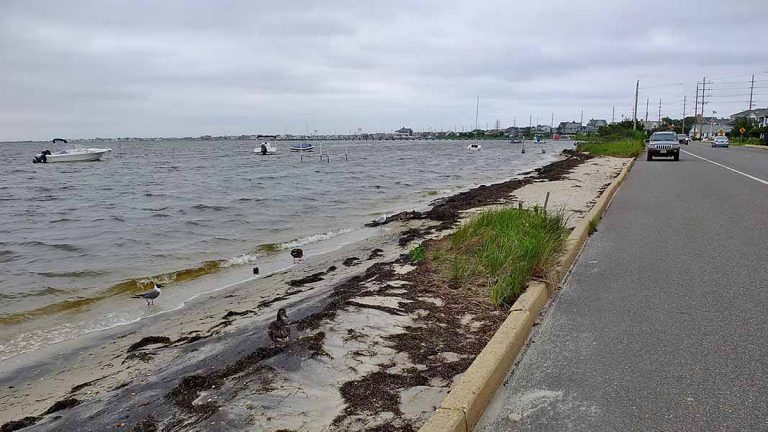 Barnegat Bay on a normal day is almost at the street level in Seaside Heights, NJ. (Alan Tu/WHYY, file)
