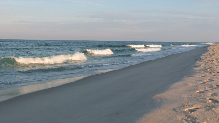 File photo of Island Beach State Park (Alan Tu/WHYY)