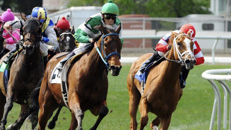 Horse-racing. (AP Photo/Hodges Photography, Alexander Barkoff)