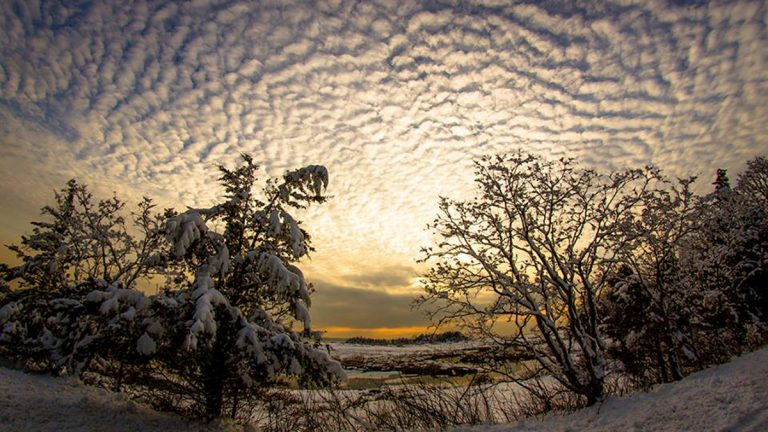 Sandy Hook yesterday before the sleet and ice moved in overnight. (Photo by Blur Revision Media Design via JSHN)