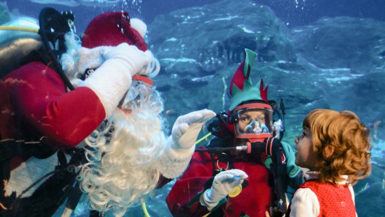 Santa appears inside the aquarium. (Bas Slabbers/for NewsWorks, file)
