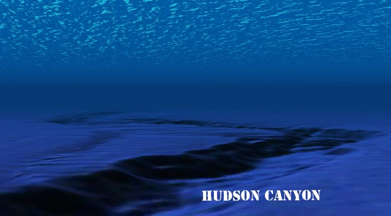 The Hudson is one of the underwater canyons to be protected. (Image Alan Tu/Google Earth)