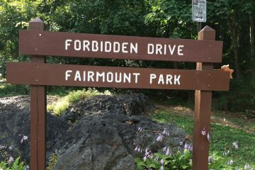 Head to Forbidden Drive and see what you can find along the trails. (Photo courtesy of Jen Bradley)