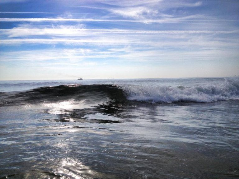 Thursday morning in the ocean off South Seaside Park. (Photo: Justin Auciello/for Newsworks)