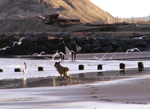 Loch Arbour in Feb. 2006. (Image: Sister72 via Flickr)