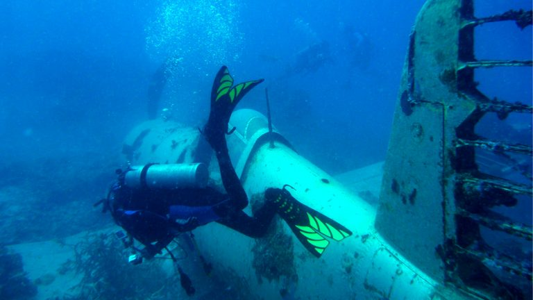 A diver swims beside one of the plane. (Mark Moline/University of Delaware)