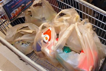 Groceries in plastic bags inside a shopping cart.