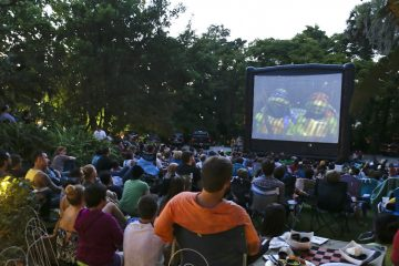Outdoor movie screening. (AP Photo/John Raoux)