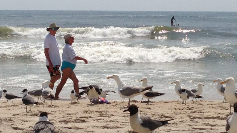 Only New Jersey beaches with state employees would be closed if there's a government shutdown, says Joe Simonetta, executive director of New Jersey Tourism Industry Association. That means 100 miles of shoreline will remain open to visitors.  (AP file photo)