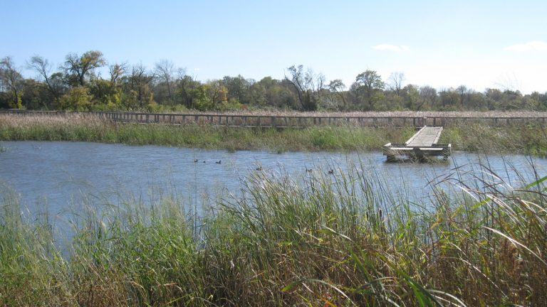 The Russell Peterson Urban Wildlife Refuge sits along the  Christina River in Delaware. Testing for toxins will begin in the Christina River basin Monday. (AP file photo)