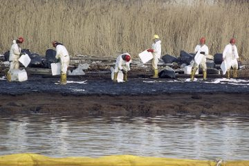 Cleanup workers lay down absorbent sheets to clean bird sanctuary Pralls Island between Linden, New Jersey and Staten Island, New York (AP file photo)