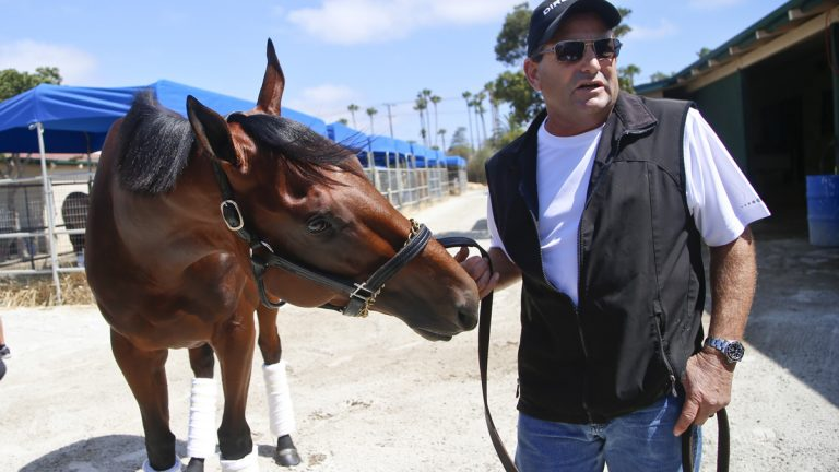 Triple Crown champion American Pharoah looks for a treat in the hand of assistant trainer Jim Barnes in the stables at Del Mar Thoroughbred Club in California. The  first Triple Crown winner  in 37 years will appear Sunday at the Haskell Invitational at New Jersey's Monmouth Park. (Lenny Ignelzi/AP Photo)