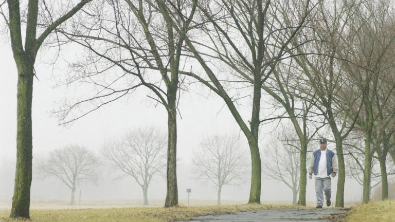 A man walks along a path lined with elm trees in Princeton, N.J. in this file photo. Spring weather has a big downside for allergy sufferers: Tree buds, the first being elms and maples, begin releasing pollen (Daniel Hulshizer/AP Photo, file)