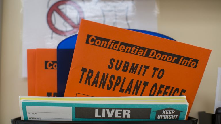 Organ donation paperwork (Whitney Curtis/AP Photo)