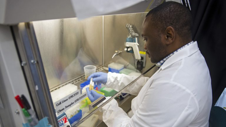 Biologist Olivier Mbaya works with serum samples from healthy volunteer participants in a European study of an experimental Ebola vaccine, at the Vaccine Research Center at the National Institutes of Health in Bethesda, Md. It took 16 years of twists and turns. Over and over, Dr. Nancy Sullivan thought she'd finally gotten her Ebola vaccine right, only to see the next experiment fail. But it was those failures that Sullivan credits for helping her unravel enough mysteries of the immune system. (Cliff Owen/AP Photo)