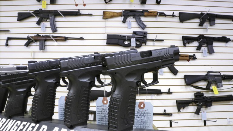In this Jan. 16, 2013 file photo, assault weapons and hand guns are seen for sale (Seth Perlman/AP File Photo)