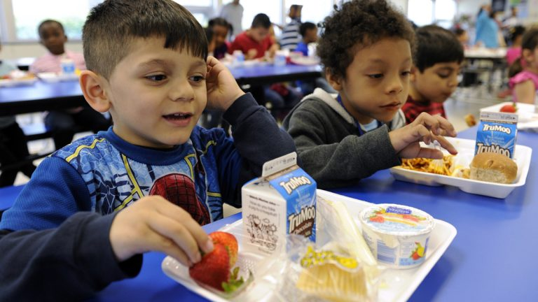 In this April 29, 2014 file photo, two elementary school boys, ages 5 and 6, eat lunch (Susan Walsh/AP Photo)