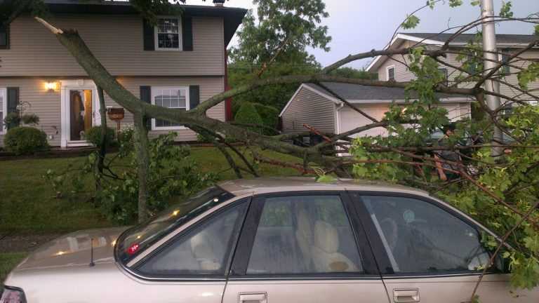 Part of a tree lies on a car after the branch broke off a tree during storms in Levittown, Pa., Thursday, July 3, 2014. Powerful thunderstorms moving across Pennsylvania have left about 171,000 customers without power. (Bob Lentz/AP Photo)