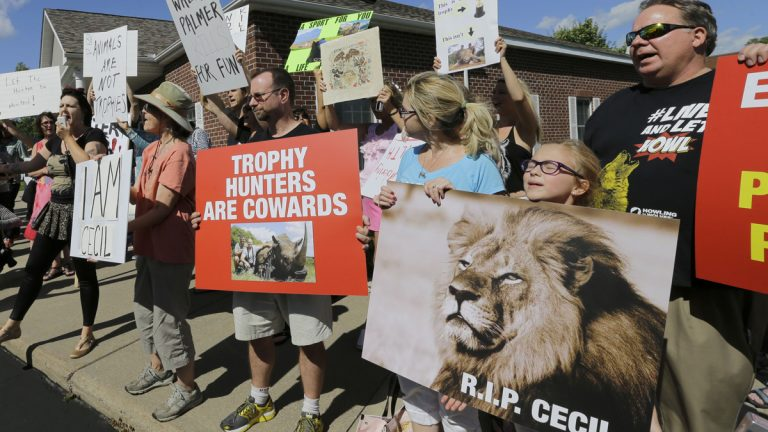 Protesters gather outside Dr. Walter James Palmer's dental office in Bloomington