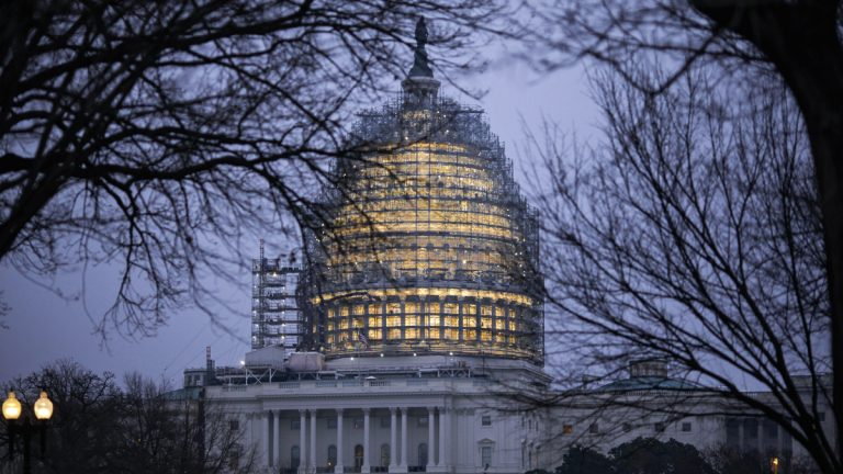 The Capitol Dome in Washington is illuminated early Friday, Jan. 8, 2016. President Barack Obama will give his final State of the Union address next Tuesday before a Congress where both the Senate and the House are controlled by Republicans. (J. Scott Applewhite/AP Photo)
