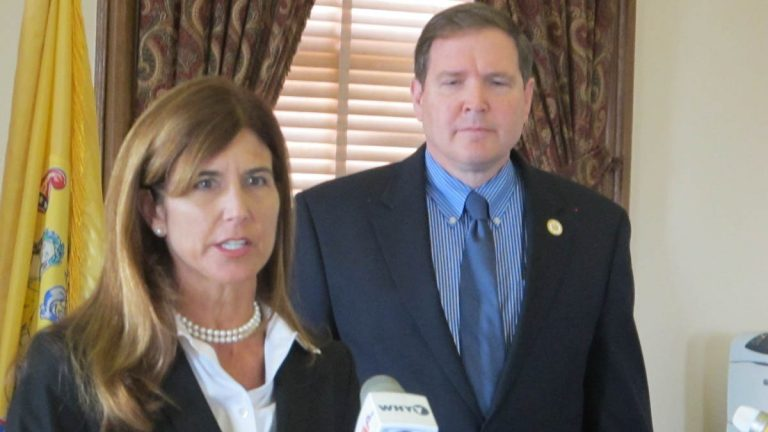 New Jersey Sens. Jennifer Beck and Mike Doherty, both Republicans, have offered an alternative to the Democrat's push for increasing the state gas tax. Beck says her  plan would generate $1.6 billion to fund road and mass transit improvements. (Phil Gregory/WHYY)