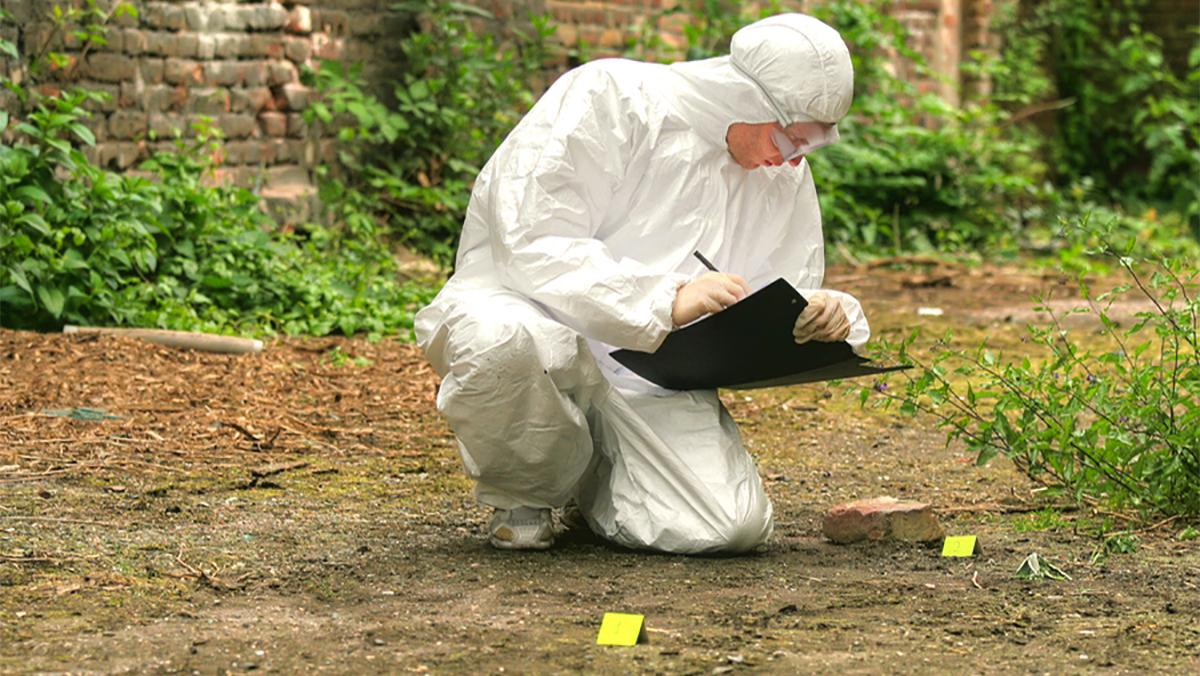 forensics as a crime scene investigator essay