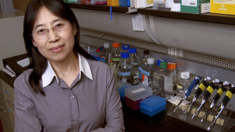 Hong Wang, a molecular biologist at the Monell Center, studies interactions of the taste and immune systems. (Image courtesy of Paola Nogueras)