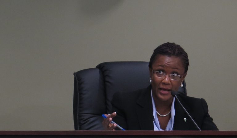 Mayor Kim Bracey asks questions during a budget hearing. (Emily Previti/WITF)