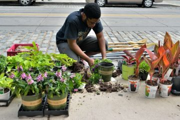 Marc Browning prepares plants along Germantown Avenue during a streetscaping project. (Bas Slabbers/for NewsWorks)