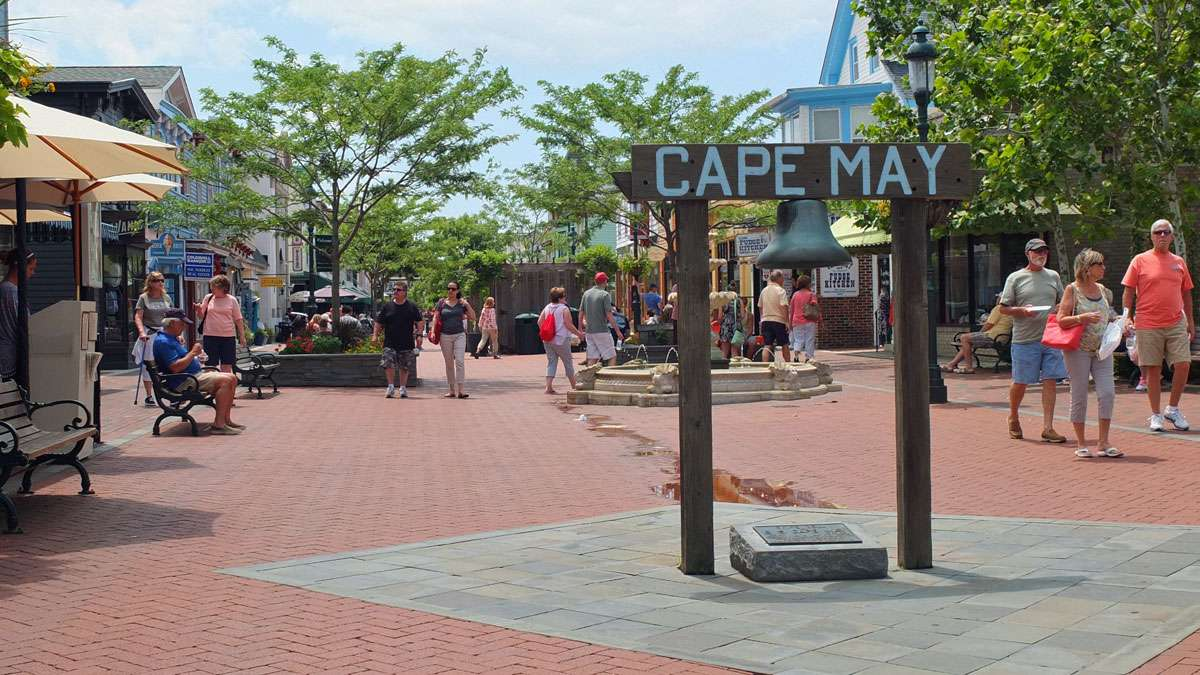 Should Cape May Be More Dog Friendly