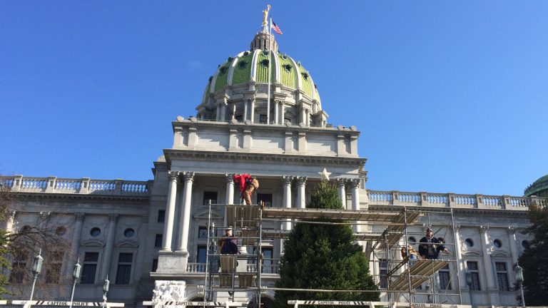 The Commonwealth's facilities and maintenance staff set up a tree donated by the Pennsylvania Christmas Tree Growers' Association on the front steps of the Capitol in Harrisburg. (Emily Previti/WITF)