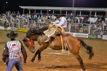 A cowboy hangs on during the saddle bronc riding event Saturday night at the Cowtown Rodeo in Pilesgrove, N.J. (Lindsay Lazarski/WHYY)