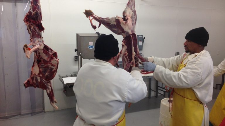 Inmates in Georgetown butcher deer meat donated by hunters. (Mark Eichmann/WHYY)