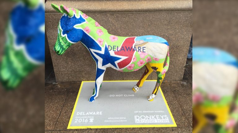Delaware Donkey Represents At The Democratic National Convention Whyy