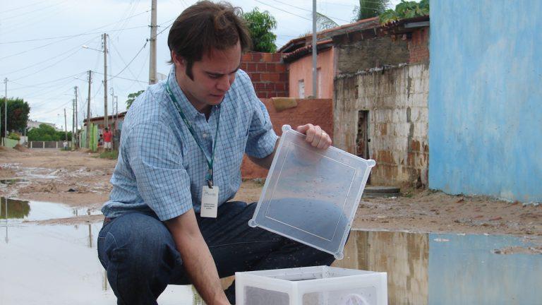 Dr Andrew McKemey releasing Oxitec male mosquitos. (Courtesy of Oxitec)