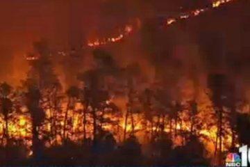 A wildfire burned in Burlington County, New Jersey. (Image via NBC10)