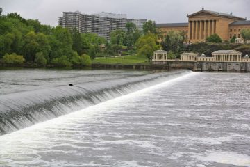 Head to Fairmount Water Works for a lesson on how fish deal with the cold. (Emma Lee/WHYY, file)