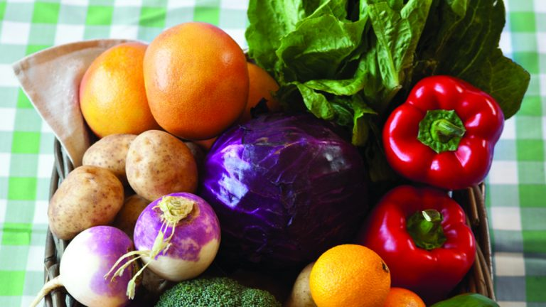 The Farm to Families program is run by the St. Christopher's Foundation for Children and offers families a discount on fresh produce distributed at the hospital each week. (Image courtesy of Farm to Families)