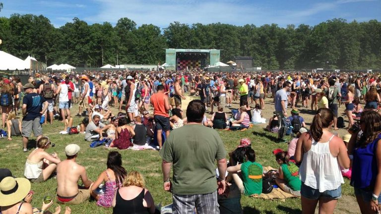 Thousands enjoy a performance at the 2014 Firefly Music Festival. (Mark Eichmann/WHYY)