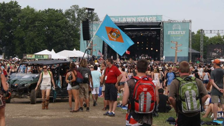 A Delaware flag is carried through the crowd last Friday afternoon at Firefly Festival. (Mark Eichmann/WHYY)