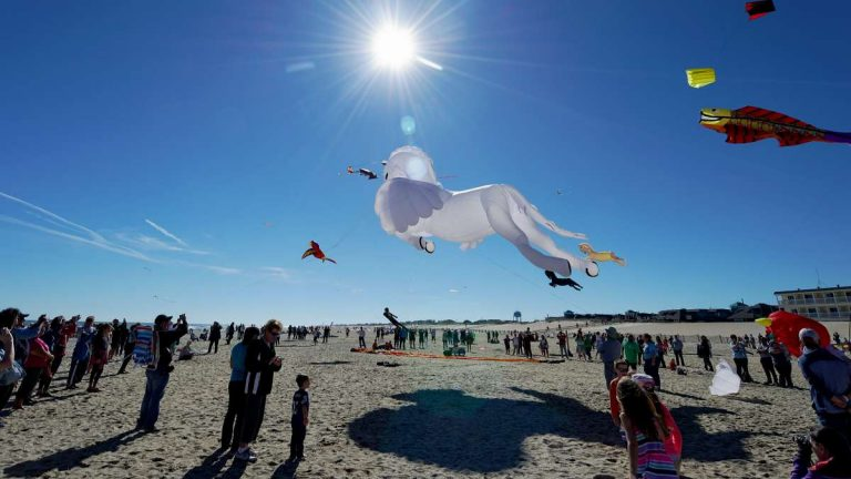 The crowd cheered as Pegasus went up at last year's festival.  (Bastiaan Slabbers/for NewsWorks)