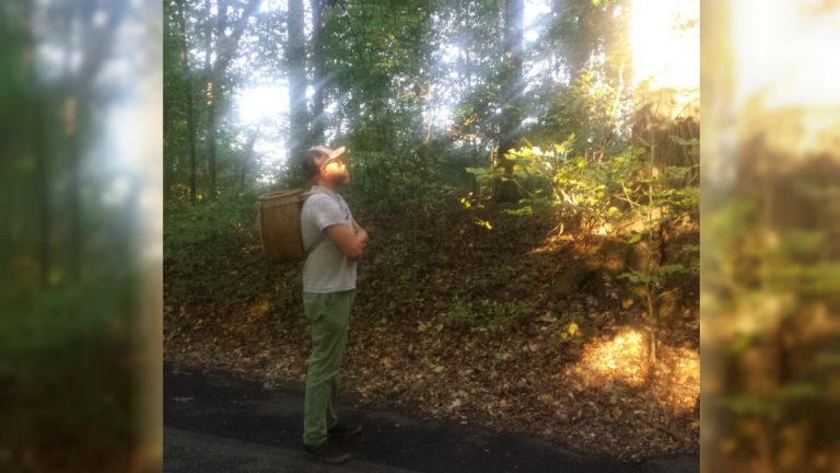 Tim Mountz looks for wild food growing at Winterthur. (Andrea Gibbs/WHYY)