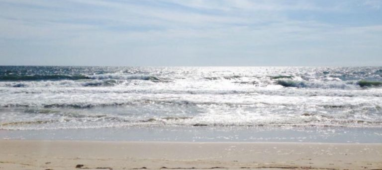 Seaside Park this morning. (Photo: JSHN contributor Casey Ann)